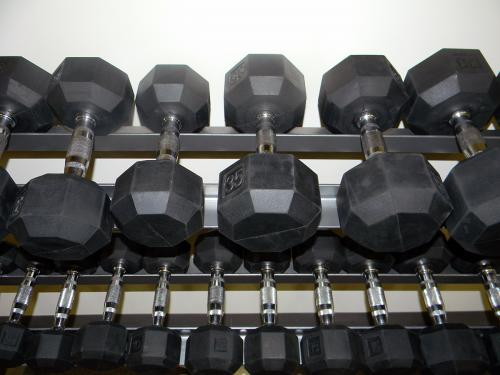 Weights in the Fitness Room